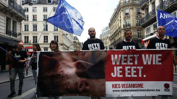 Abolition of slaughterhouses Paris 2014
