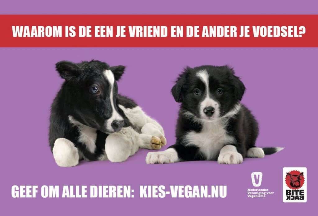 Vegan Outreach Reclame Campagne