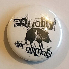 Button-equality-wit