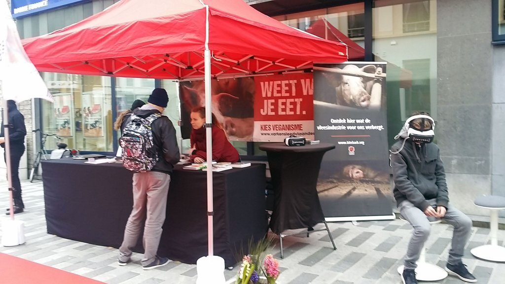 Vegan outreach actie in Sint-Niklaas