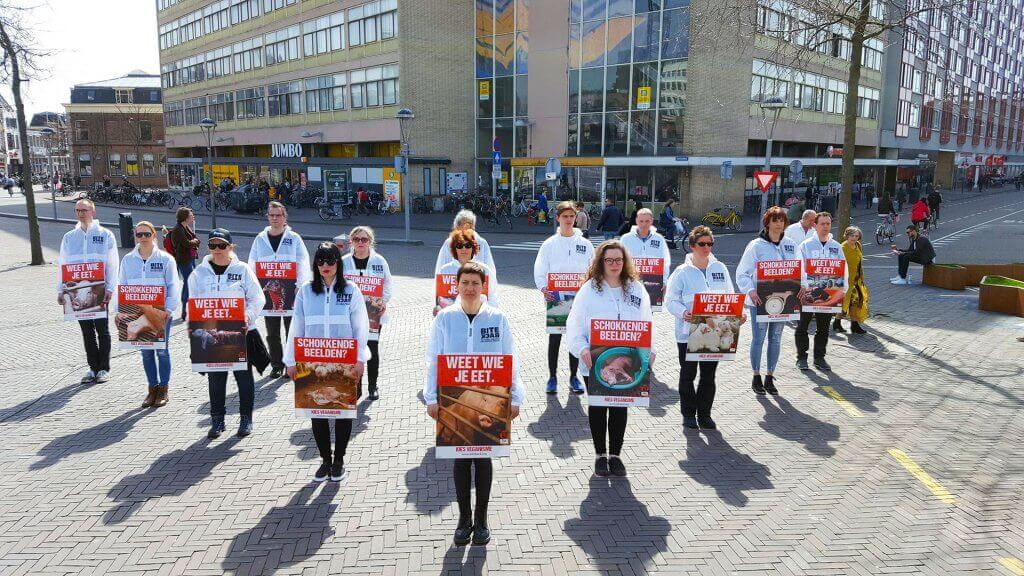 Vegan outreach actie in Leiden