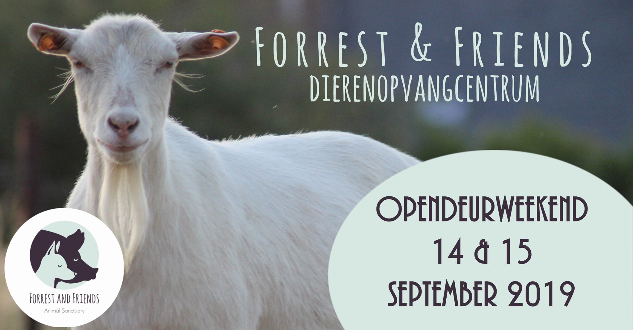 Opendeur Forrest Friends