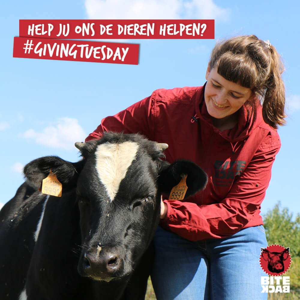 Steun jij Bite Back op Giving Tuesday